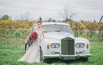 Luxurious Vineyard Wedding Willow Springs Vinery Photo