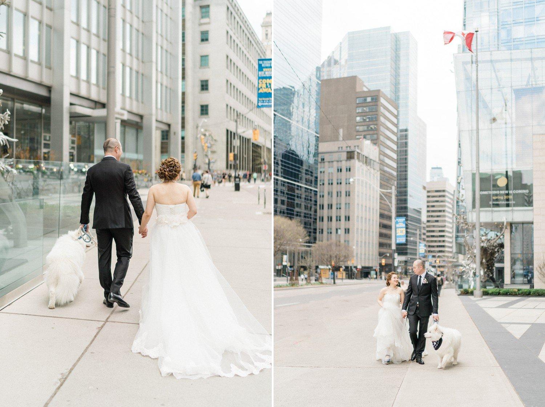 Shangri_La_Hotel_Toronto_Wedding_Photos_with_Samoyed_Puppy
